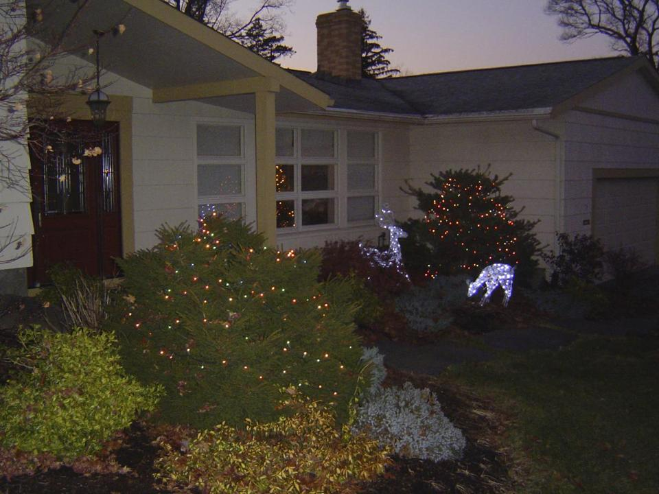 A display of Christmas lights outside the author's house in Braintree.