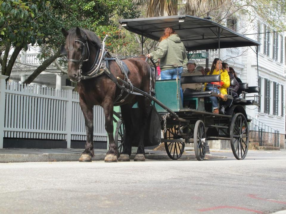 A horse-drawn carriage stops on a street in the historic district of Charleston, S.C.