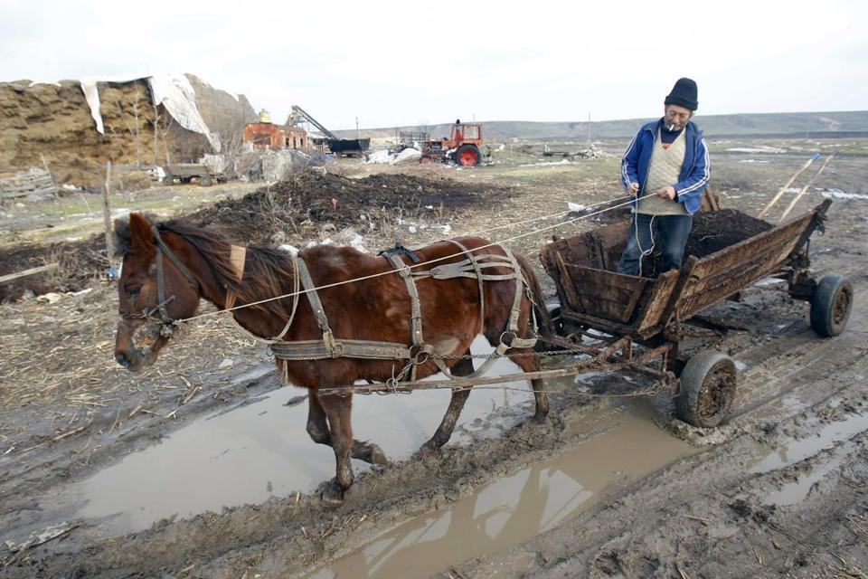 The unmarked horse meat found in food has been traced to Romania, where horses are a key part of the rural economy.