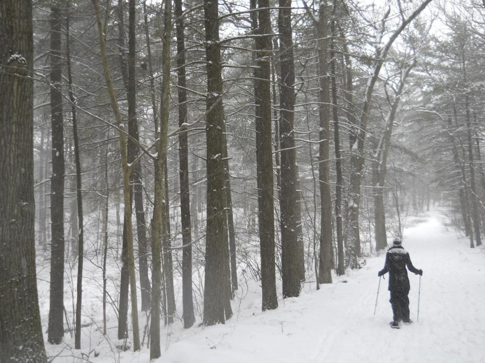 The Winter Fest was designed to encourage people to visit the Blue Hills Reservation.