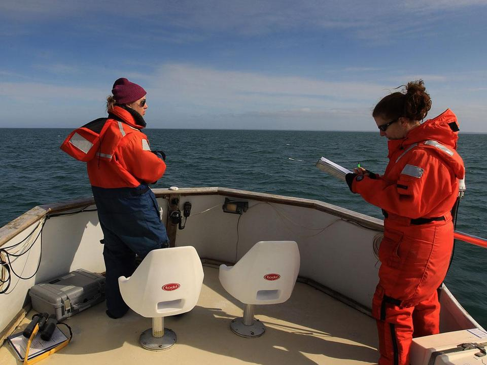 Research assistants Bridget McKenna (left) and Christy Hudak searched out whales from the Shearwater.