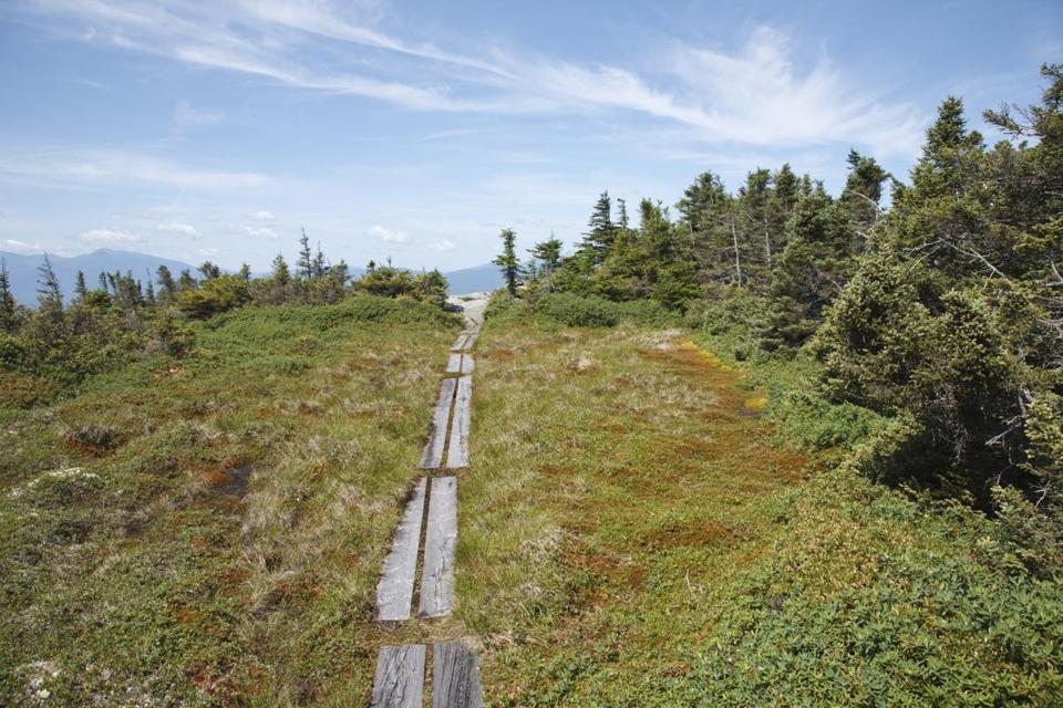 ON HIGH The summit of New Hampshire's Mount Success trail rewards those who make the often steep climb.
