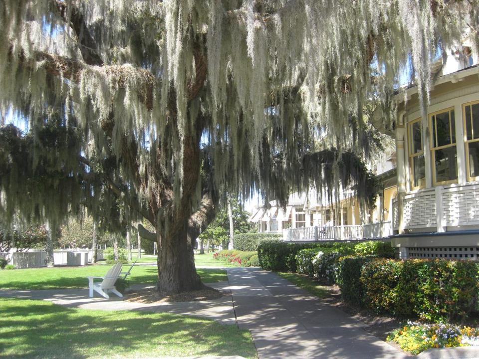 Jekyll Island, Georgia, of the state's Golden Isles, and once home to some of America's wealthiest families.