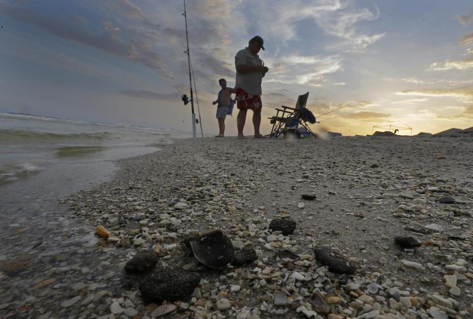 Tar balls mixed with shells on the beach in Gulf Shores, Ala. BP said it is looking to recover potentially billions in settlement payouts made following its 2010 oil spill in the Gulf of Mexico.