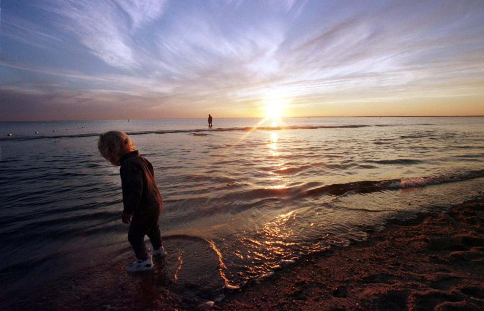 Tasha Garland, 2, of West Falmouth, hunts for shells in the tide at Chapoquoit Beach.