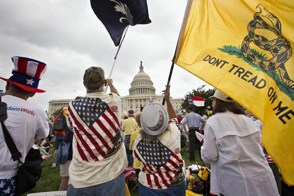 Tea Party activists rallying in front of the US Capitol in Washington in 2013.