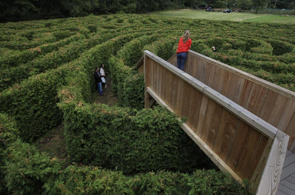Avery Bishop, 17, of Marlborough with the Honey Pot Hill Orchard in Stow, MA and in charge of the maze offers help to a couple lost in the maze.