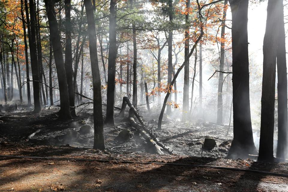 Trees and shrubs continued to smolder Tuesday after a fire in the Blue Hills Reservation was contained.