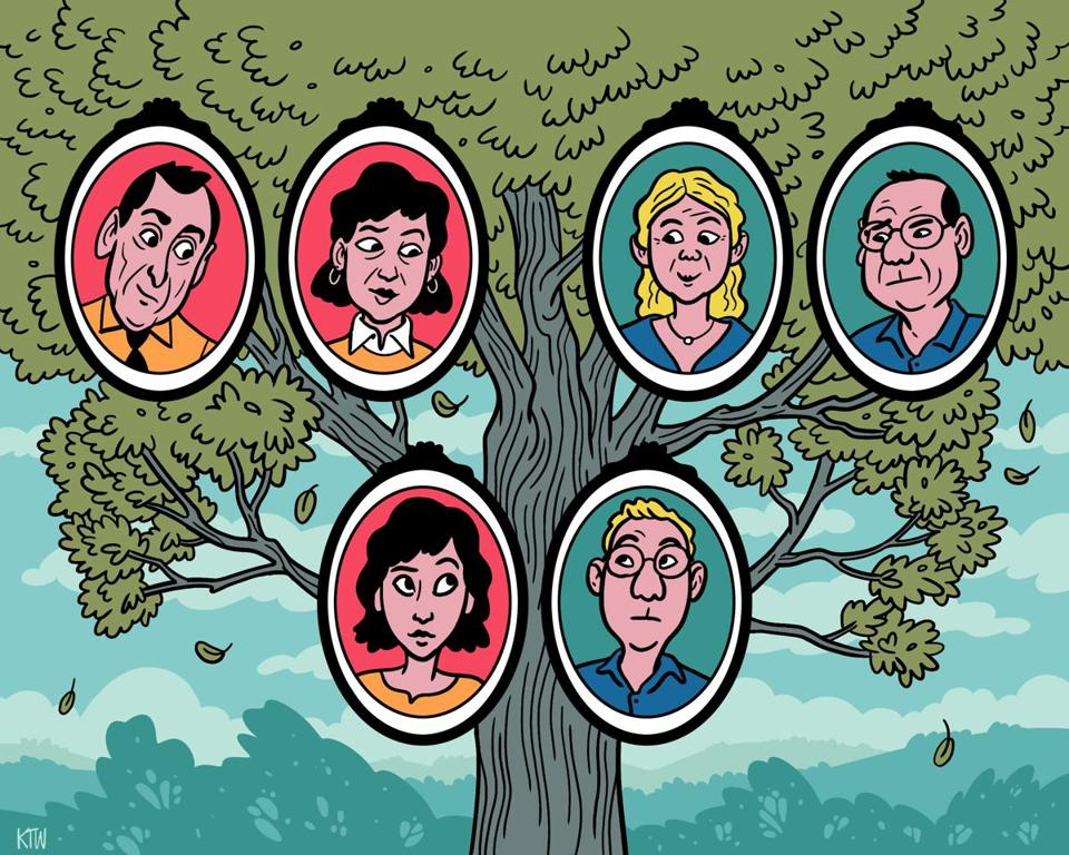 The Weird Science Of In Laws The Boston Globe