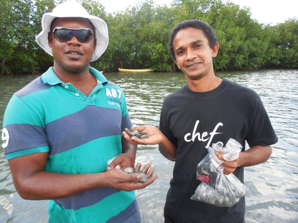 desi Banhan (right), chef at Hermitage Bay resort on Antigua, takes guests cockle fishing in a nearby salt marsh.