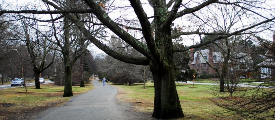 Blackstone Boulevard, lined with million-dollar homes, is a popular walking route on the east side of Providence.