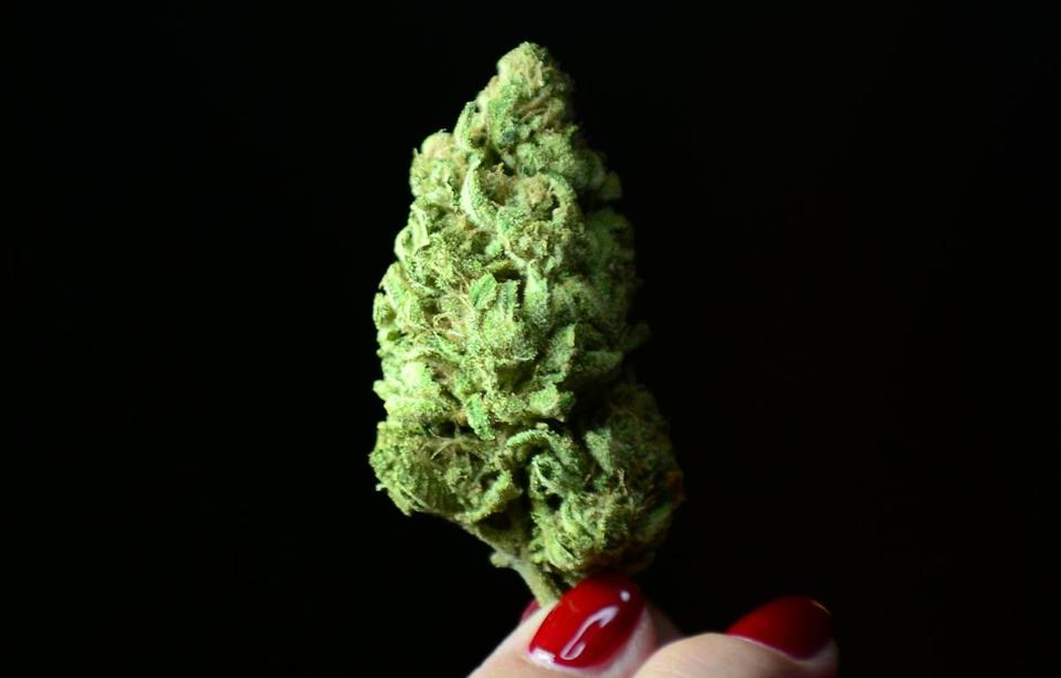 Massachusetts is among the states that have legalized sale and use of medical marijuana.