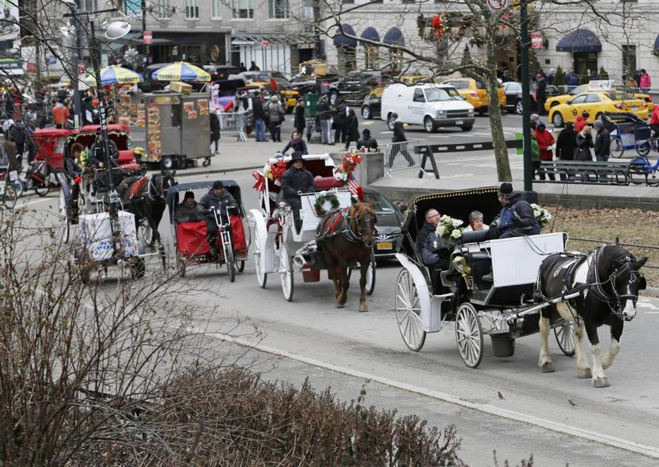 Carriage drivers say shutting down the industry will eliminate a surplus-horse outlet.