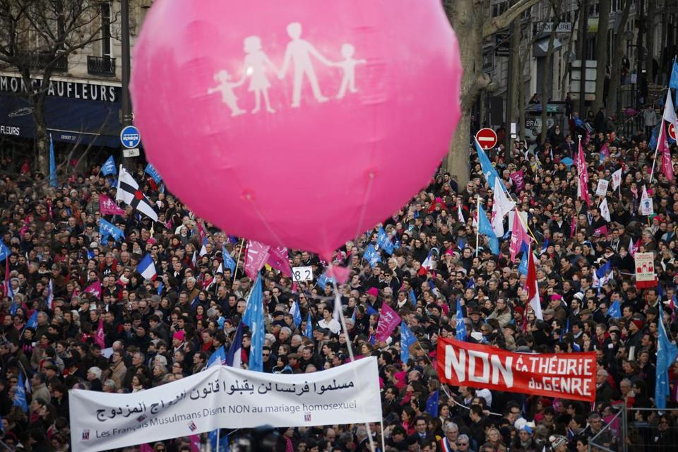 "People waved trademark pink, blue and white flags during a protest march called, ""La Manif pour Tous"" (Demonstration for All) against France's legalization of same-sex marriage."