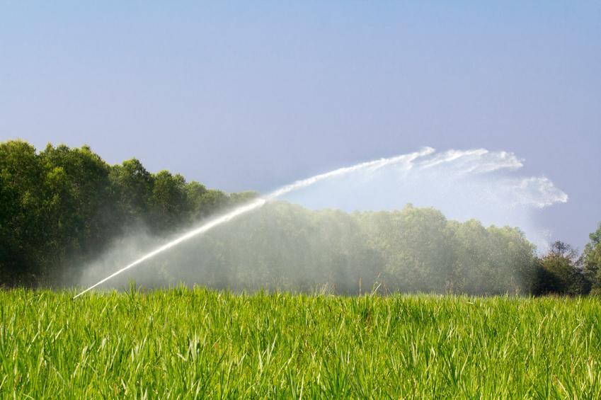 Using sprinklers or irrigation systems is banned now in three towns.