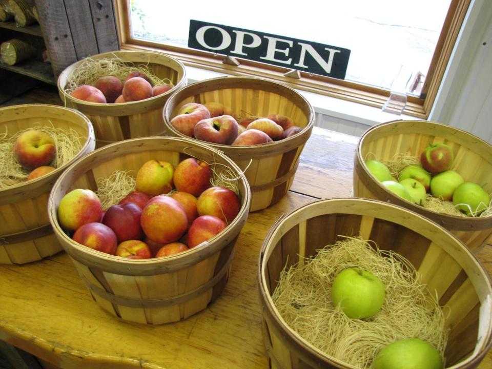 At Hilltop Orchards in Richmond, Mass. you can pick your own apples on the 200-acre property, and taste cider and wine at the Farm WInery Store.