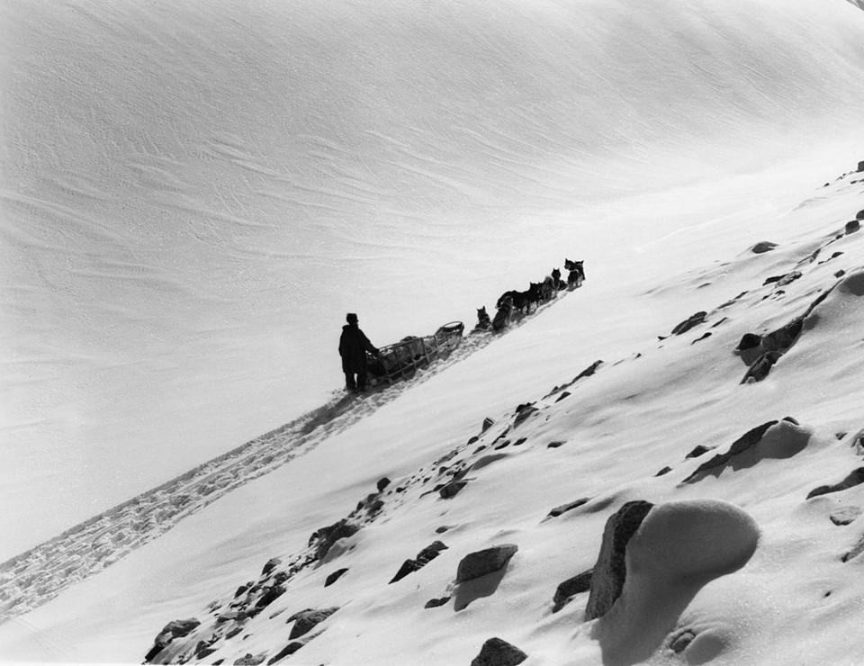 "Above: ""Earl Norris and His Dog Team, Muldrow Glacier, Alaska,"" (1947)."