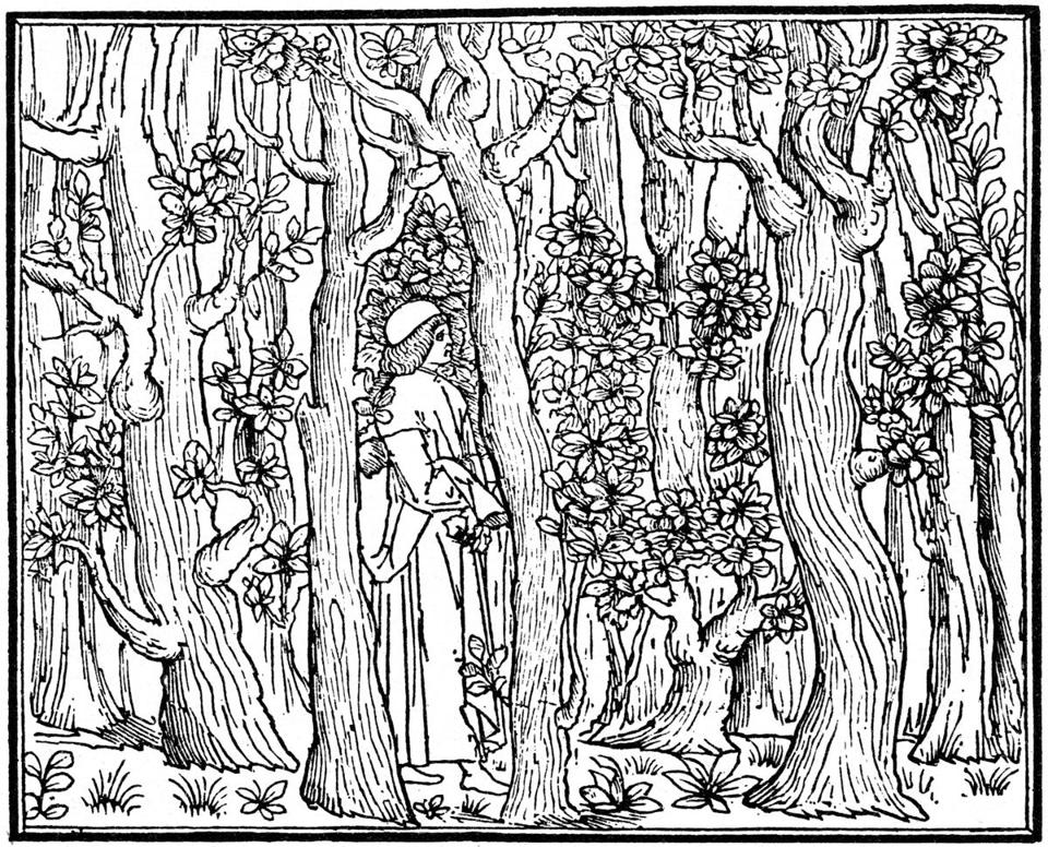 """The Lover in the Wood,"" engraving from 1499."
