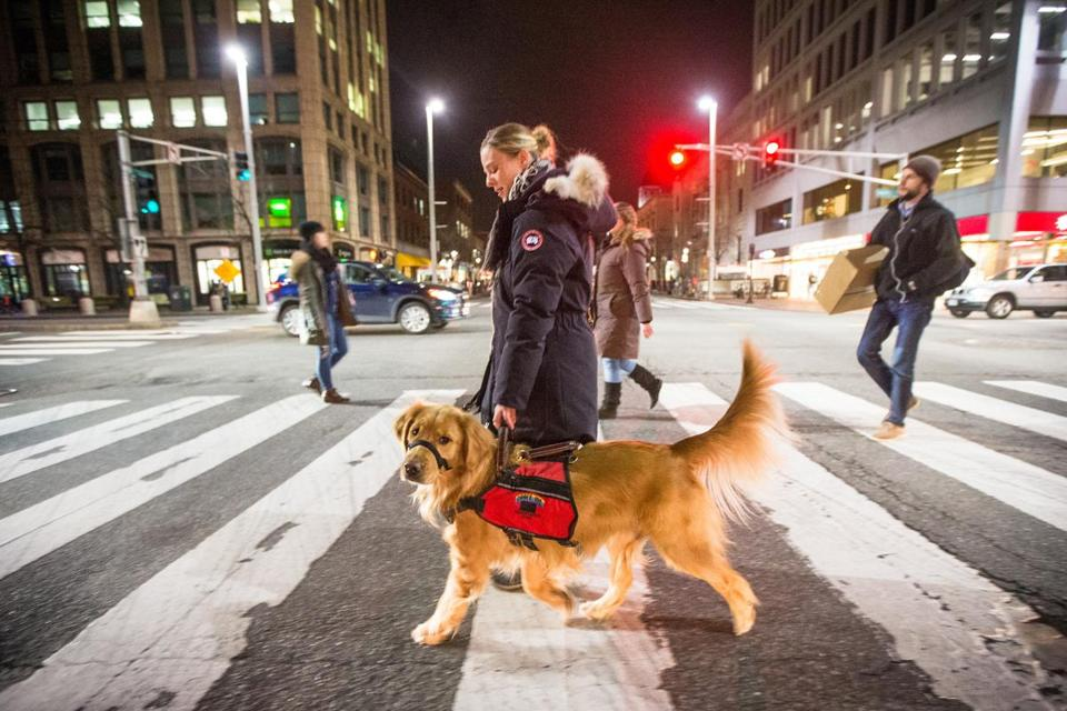 Anne Szabla, a diabetic, walked in Cambridge after work with her service dog Sienna, who is trained to alert Szabla when her blood sugar is low.