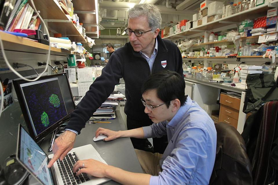 Harvard stem cell scientist Doug Melton (left) and his post-doctoral fellow Peng Yi discovered a hormone that in early experiments increases the number of insulin-producing cells in the pancreas.