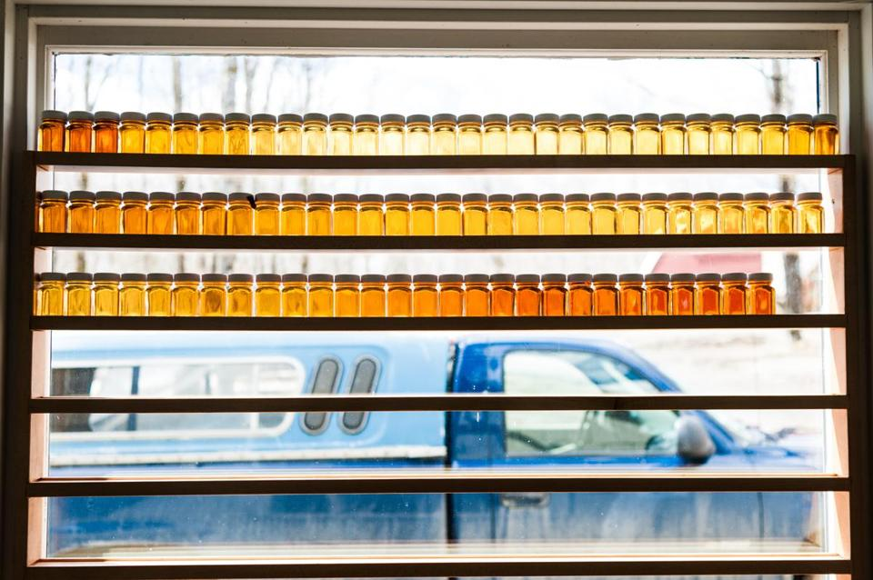 Grades of maple syrup were lined up in a window at Marvin's sugarhouse in Johnson, Vt., last week.