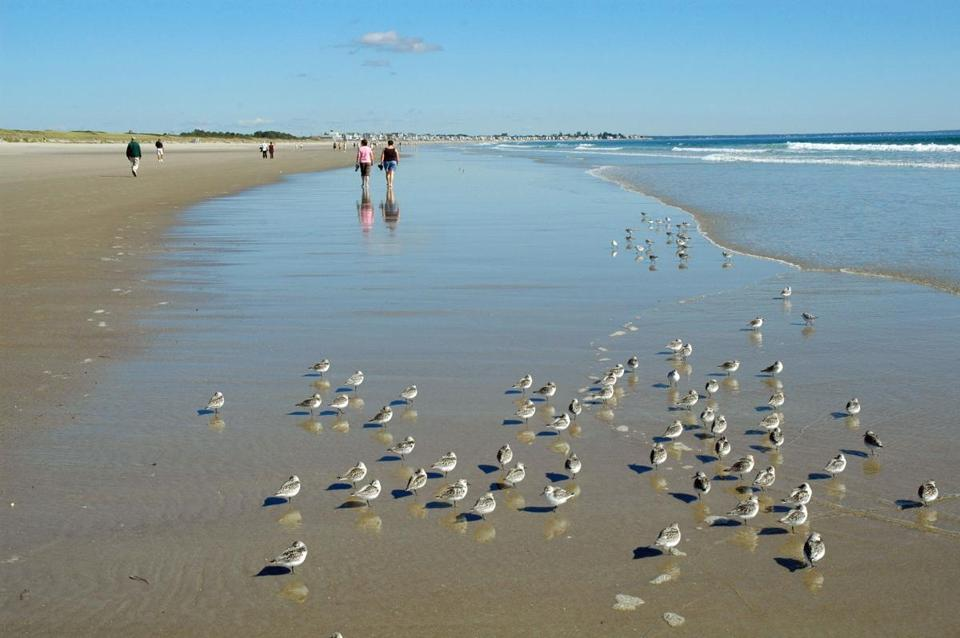 Ogunquit Beach In Maine Was Named One Of The Top 25 Beaches Us By
