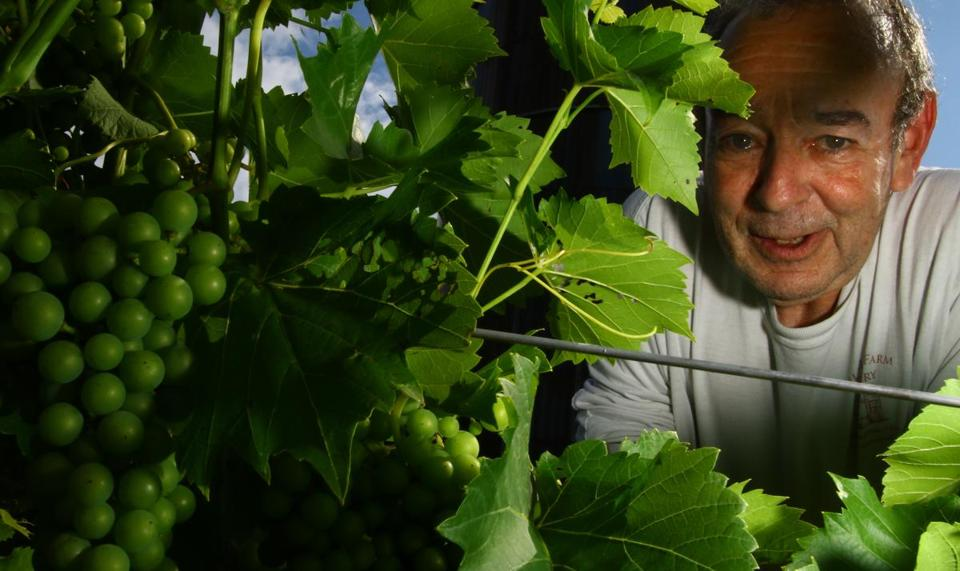 Richard Adelman's family-owned and operated Alfalfa Farm Winery is celebrating its 20th year of business.