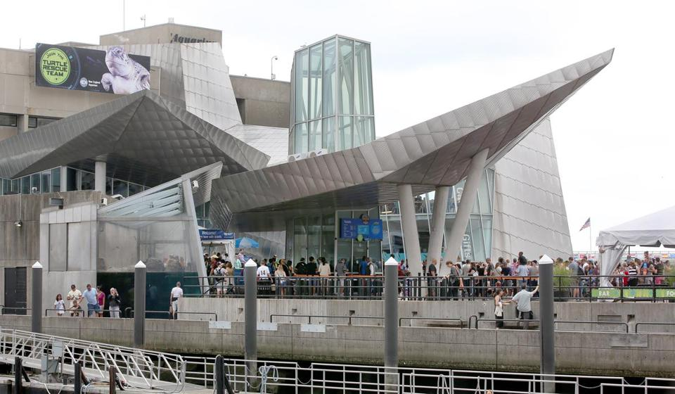 Visitors waited in line at the New England Aquarium in 2015.