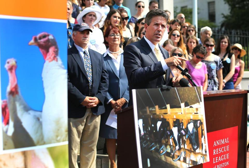 Wayne Pacelle, CEO of the Humane Society of the United States, spoke in front of the State House to promote the 2016 ballot question.
