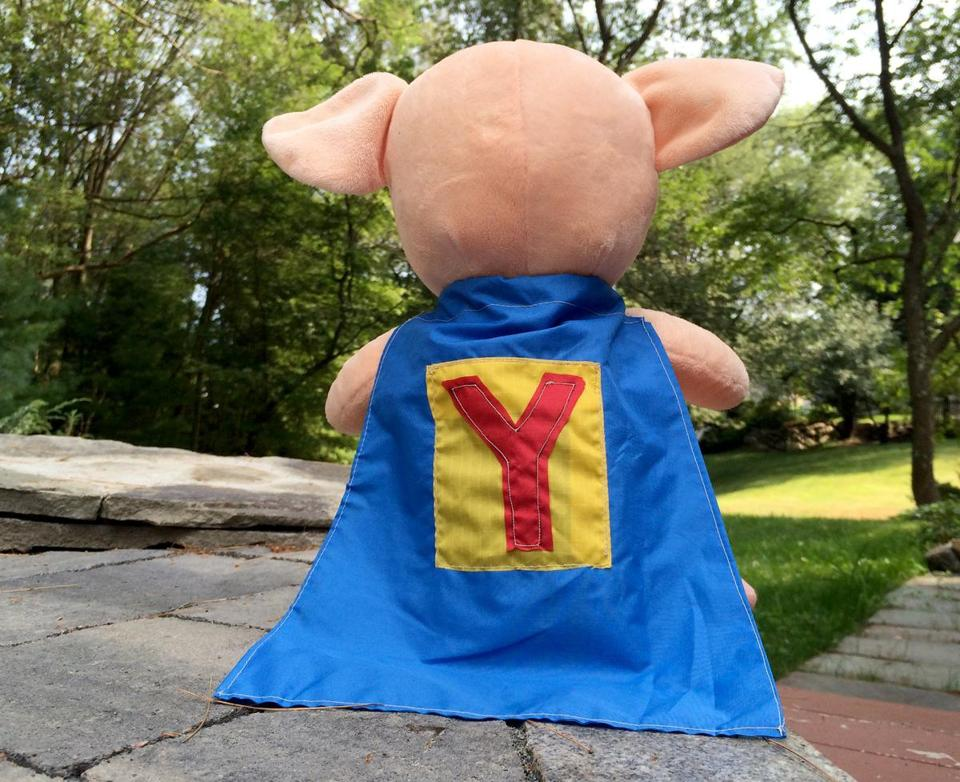 Yawkey looks out into the backyard wearing his new cape. (Mary Schwalm)