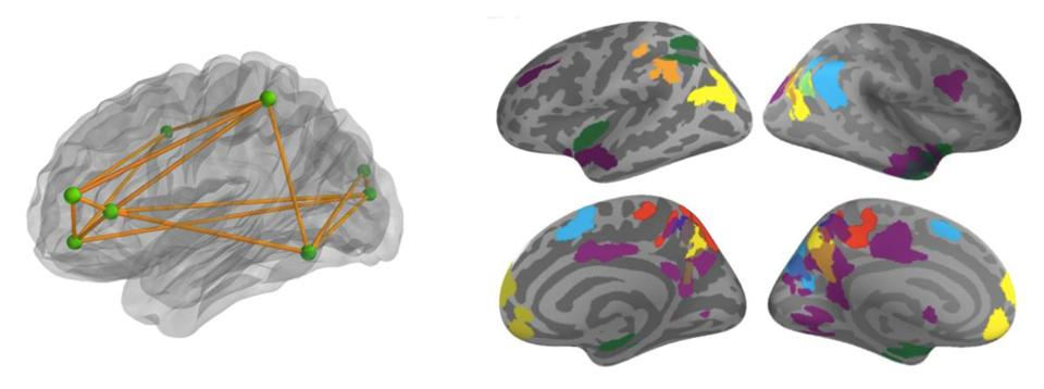 Researchers identified three regions of the brain that predict improvement in math learning — the posterior parietal cortex, ventrotemporal occipital cortex, and the prefrontal cortex.