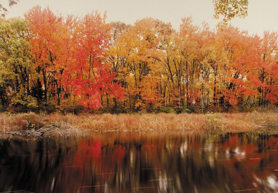 "Frank Gohlke's ""The Sudbury River — Ashland, Massachusetts, October 1989."""