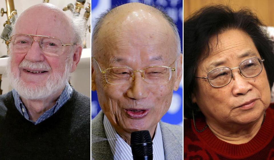 The Nobel judges awarded the prize in medicine or physiology to (left to right) Irish-born William Campbell, Satoshi Omura of Japan, and Tu Youyou, the first-ever medicine laureate from China.