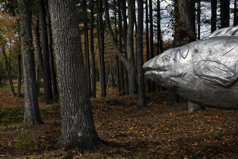 Magritte's Smile, a 12-foot-long fish cast from aluminum, is a work Tufte made with Penny Humphrey.