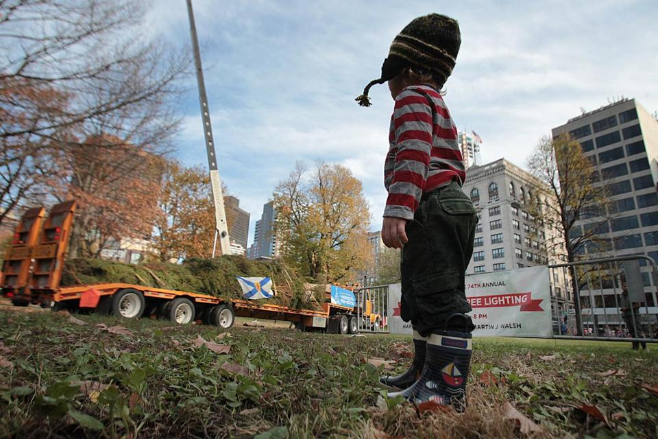 Maxwell Mulcahy, 2, of Boston watched the gigantic tree arrive on Boston Common.