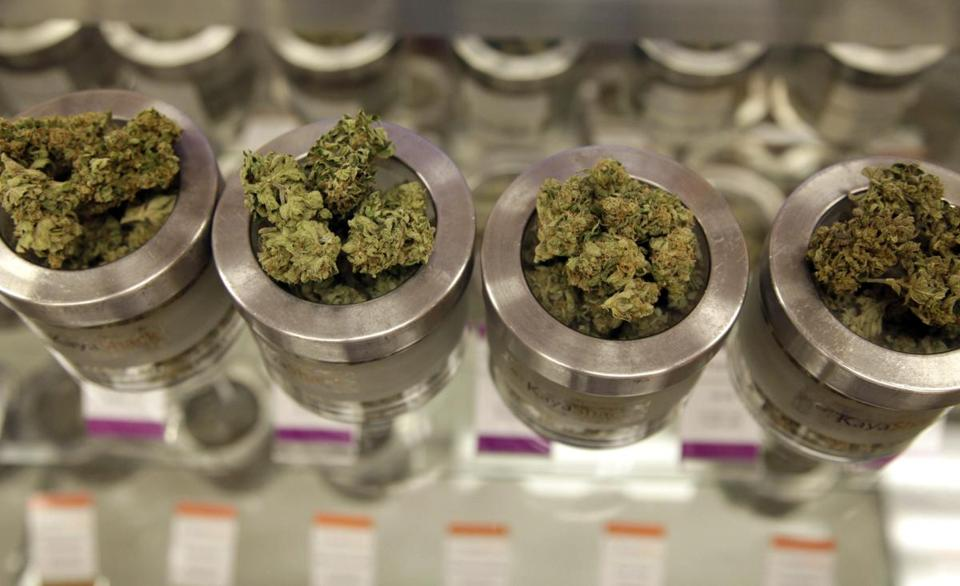 essays on legalization of drugs Legalizing marijuana will be helpful in freeing up the criminal justice resources to focus on other grave matters such as terrorism, murder and homicides, and harder drugs in addition, legalizing marijuana will help in reducing the street justice associated with drugs, which is the primary cause of cyclic street violence and deaths.