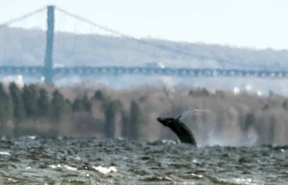 Jumped Bridge Rhode Island