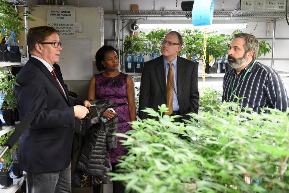 Massachusetts legislators toured the Riverrock Cannabis facilities in Denver in January.