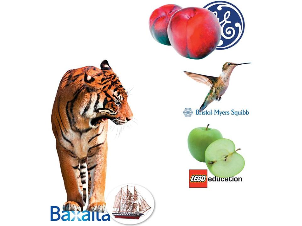 "Clockwise, from bottom left: Baxalta adopted the name ""Project Tiger'' for its move to Kendall Square before shifting to ""schooner.'' It was ""plum"" for GE, ""hummingbird'' for Bristol-Myers, and ""apple'' for Lego."