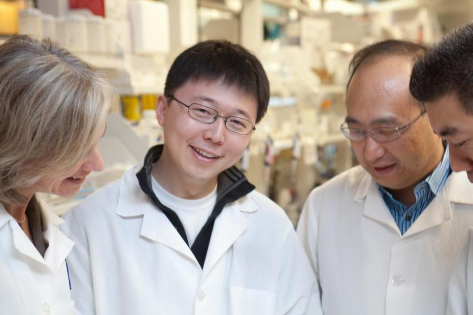 MIT professor and brain researcher Feng Zhang (center) is a cofounder of Editas Medicine.