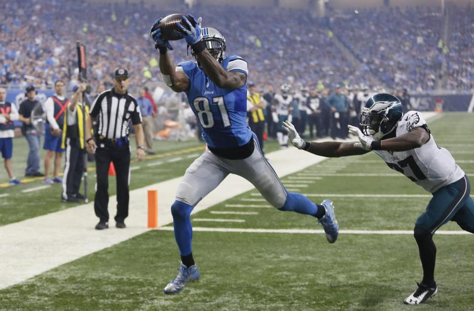 Lions wide receiver Calvin Johnson (81) finishes with 83 touchdown catches f2d057225