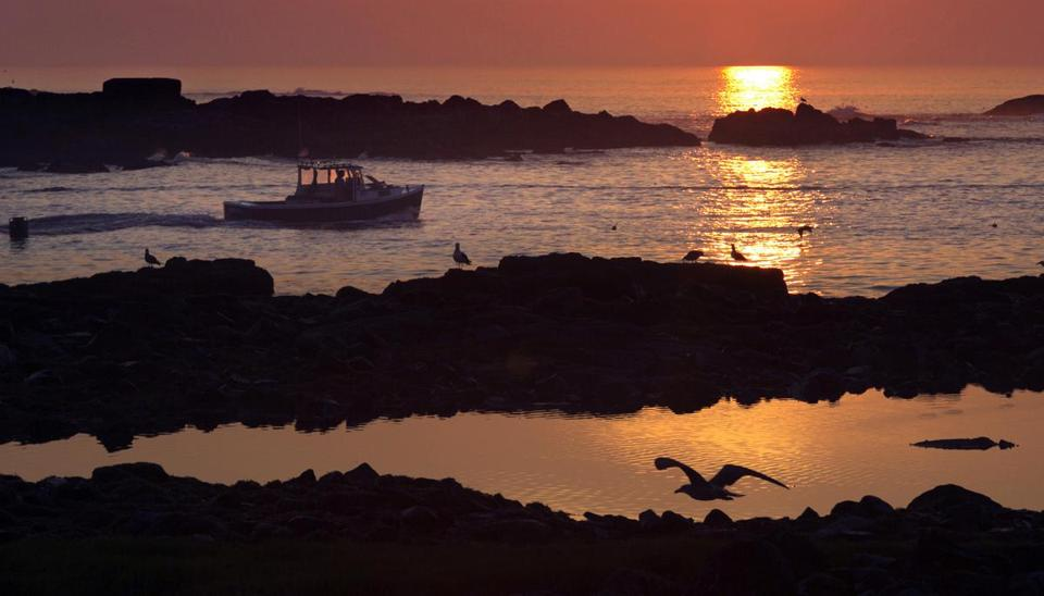 FILE - In this Aug. 17, 2015, file photo, a lobsterman motors through a channel between islands as he leaves Cape Porpoise Harbor at sunrise in Kennebunkport, Maine. As most Americans brace themselves for losing an hour of sleep, some corners of the country are proposing bold alternatives to daylight saving time. Lawmakers in a dozen states, from Alaska to Florida, want to abolish the practice of changing clocks twice a year. (AP Photo/Robert F. Bukaty, File)