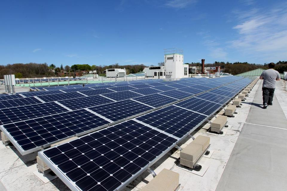 The growth of rooftop solar panel installations has come to a shuddering stop, with a projected decline of 2 percent.