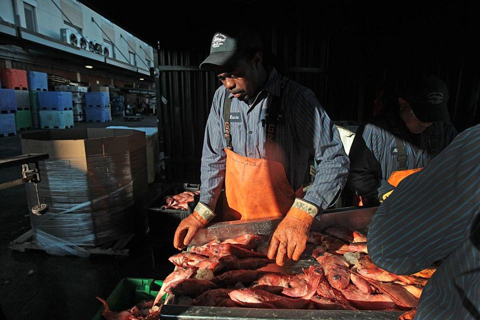 Boston s seafood business upended by global industry in for Atlantic fish boston