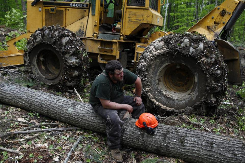 Matt Reed took a break after felling a tree and cutting it into lengths with a chainsaw.