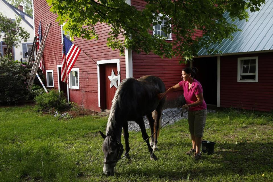 Susan Goodhouse took one of the American Connemara Ponies that she breeds outside for a quick bath.