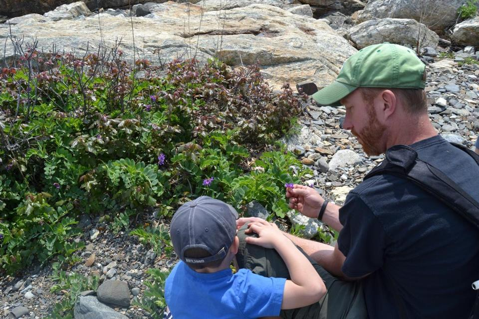 Chef Evan Hennessey forages for plants with his son, Kaden.