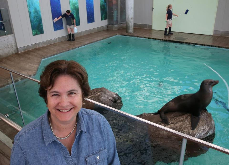 New England Aquarium chief executive Nigella Hillgarth is leaving the Boston institution after three years.