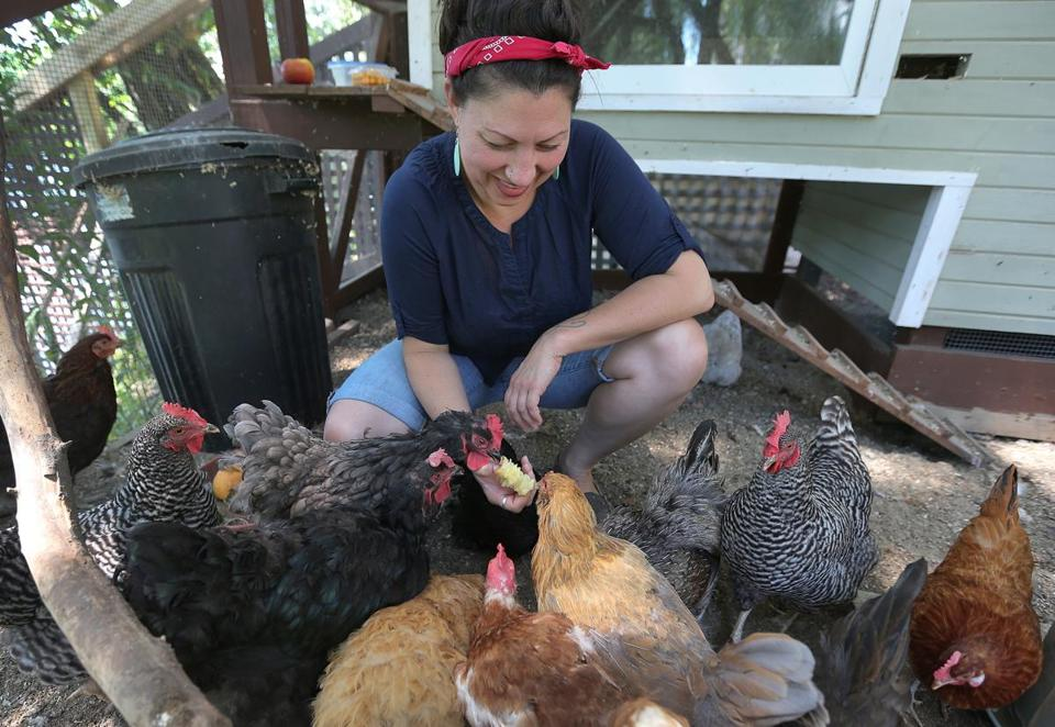 "Khrysti Smyth is a backyard chicken farmer who is also the go-to expert on urban agriculture. ""I helped pass the first prochicken ordinance in Boston and now offer seminars, classes, chicken consulting, and kids programs,"" she said."