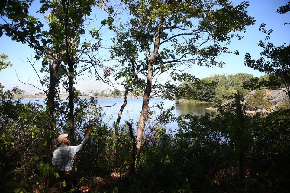 Boston pond public access
